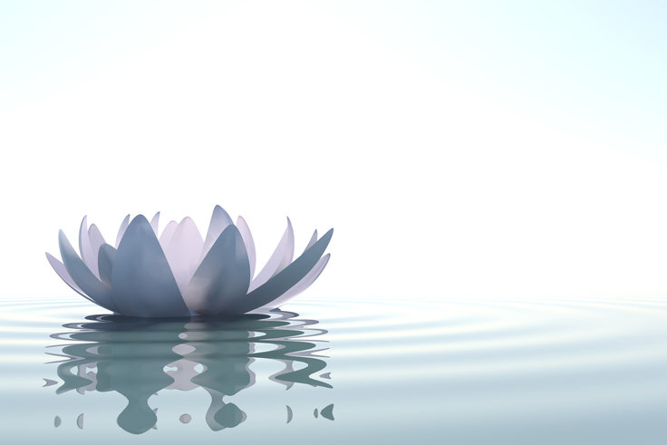 how to be present and mindful